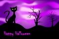 Picture cat, Happy Halloween, night, black