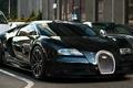 Picture Bugatti Veyron Super Sport, black, Wallpaper HD, road