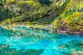 Picture China, tourists, lake, Jiuzhai valley national Park, Sichuan, landscape