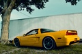 Picture NSX, Back, Yellow, Grass, Acura, Tree