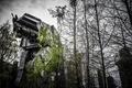 Picture forest, robot, large, star wars, combat, photo, photographer, Greg Stevenson, star wars