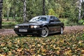 Picture bmw 7, e38, Boomer, forest, autumn, BMW