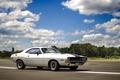 Picture Dodge, Challenger, white, '1970