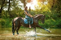 Picture barefoot, horse, grass, jeans, rider, Mike, the bushes, trees, nature, grace, horse, sitting, the sun, ...