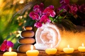 Picture flowers, Spa stones, orchids, towel, candles