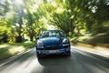 Picture speed, forest, Porsche Cayenne