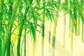 Picture Bambuk, light, greens