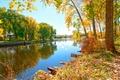 Picture trees, river, autumn, foliage