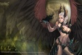 Picture lineage, wings, Black angel