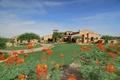 Picture style, architecture, house, Villa, hasienda