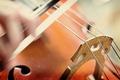 Picture macro, music, violin