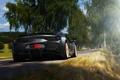 Picture road, trees, grey, speed, blur, ferrari, Ferrari, grey, back, 458 speciale