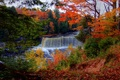 Picture waterfall, trees, the bushes, leaves, autumn, branches, river, forest