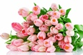 Picture flowers, bouquet, tulips, pink, pink, tulips