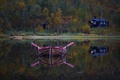 Picture forest, boat, lake, paddles