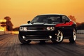 Picture Dodge, machine, cars, american cars, Challenger