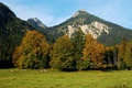 Picture Alps, mountains, Austria, nature, landscape, forest
