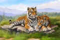 Picture tigers, lie, grass, painting, olggah, stones, art