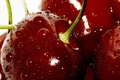 Picture drops, macro, cherry, berries, red