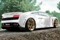 Picture Lamborghini, car, Gallardo, supercar, Wallpaper, Suite, cars, machine, Lamborghini, imsa, Gallardo, wallpaper