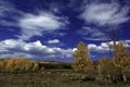 Picture autumn, forest, the sky, clouds, trees, landscape, stones, birch