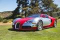 Picture veyron, silver, red, bugatti, lawn