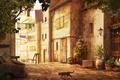 Picture machine, cats, the city, street, home, plants, the skeleton, art, linen, pots