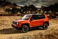 Picture Jeep, 2015, Trailhawk, Renegade