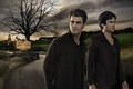Picture Warner Bros. Pictures, Boys, The, Vampire, Virginia, Stefan, Diaries, Film, Darkness, Paul Wesley, Family, Damon, ...