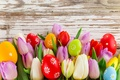 Picture Eggs, Holiday, photo, Tulips, Flowers, Leaves, Easter