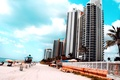 Picture palm trees, florida, USA, stay, high, beach, the city, miami beach, sea, Miami, sand, blue, ...