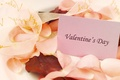 Picture love, the inscription, holiday, rose petals, Valentine's day