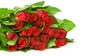 Picture leaves, flowers, bouquet, buds, flowers, leaves, bouquet, red roses, red roses, buds