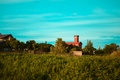 Picture the sky, grass, the building, Russia, Kaliningrad