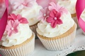 Picture flowers, cakes, cream, dessert, decoration, sweet, cupcakes