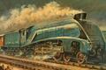 Picture Wet Cement, Mallard, train, train
