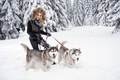 Picture blonde, smile, girl, snow, husky