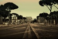 Picture road, trees, people, the city, Colosseum, street, Italy, Rome