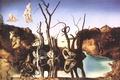 Picture picture, surrealism, swans, Salvador Dali, artist, reflecting in elephants, Salvador Dali, 1937, painter