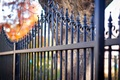 Picture autumn, leaves, tree, the fence, rods, bokeh, iron