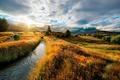 Picture autumn, field, landscape, nature
