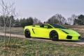 Picture green, lamborghini gallado spyder, Lamborghini, nature