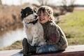 Picture dog, joy, friends, mood, boy
