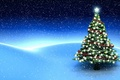 Picture tree, snowfall, star