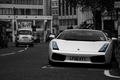 Picture black and white, lamborghini, gallardo