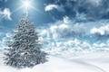 Picture the sun, the sky, herringbone, snow