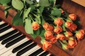 Picture roses, piano, buds
