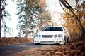 Picture stance, Lexus GS, before, white, autumn, forest
