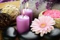 Picture flowers, gerbera, candles, sea salt, stones