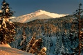 Picture Park, landscape, snow, mountains, winter, trees, forest
